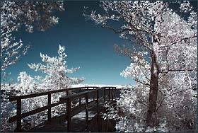 Bridge, infrared