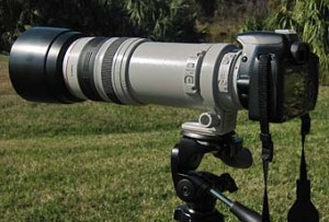 Canon 100-400mm L IS