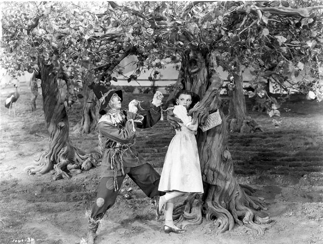 dorothy-in-the-fighting-trees